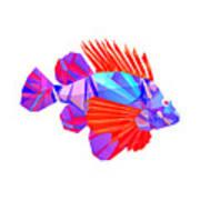 Crystal Fish - 20 Art Print