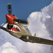Curtiss P-40n Warhawk Art Print