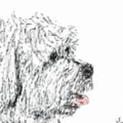 Cute Dog Art Print