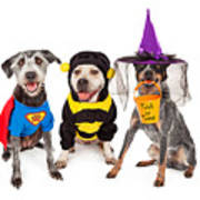 Cute Dogs Wearing Halloween Costumes Art Print