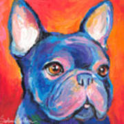 Cute French Bulldog Painting Prints Art Print by Svetlana Novikova