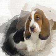 Cute Little Basset Artesien Normand Puppy Art Print