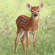 Cute Whitetail Deer Fawn Art Print