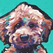 Cutey Poo Art Print