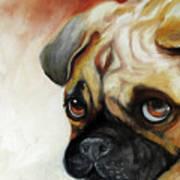Cutie Pie Pug Art Print