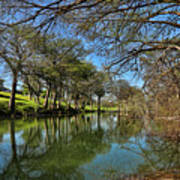 Cypress Bend Park Reflections Art Print