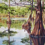Cypress In Lake Chicot Art Print