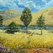 Cypresses At Lydenburg Art Print