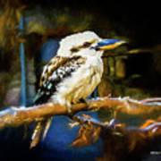 Kookaburra Dacelo Novaeguineae Art Print