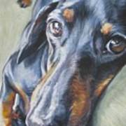 Dachshund Black And Tan Art Print