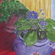 Dads Violets Art Print