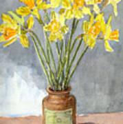 Daffodils In A Pot. Art Print