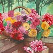 Dahlia Harvest Art Print