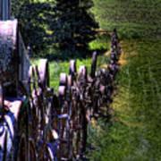 Dahmen Fenceline Art Print