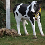 Dairy Cow Stature. Art Print