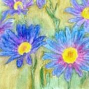 Daisey Field Art Print