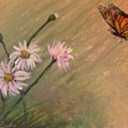 Daisies And Butterfly Art Print