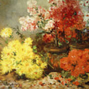 Daisies, Begonia, And Other Flowers In Pots Art Print