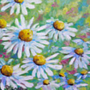 Daisies In Spring Art Print