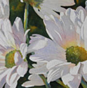 Daisy Bunch Print by Judy Mercer