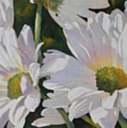 Daisy Bunch Art Print