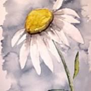 Daisy Modern Poster Print Fine Art Art Print
