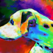 Dalmatian Dog Portrait Art Print