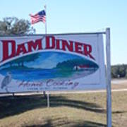Dam Diner Art Print