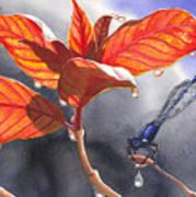 Damsel Fly Art Print