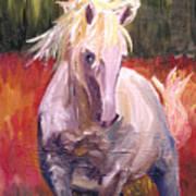 Dances In Fire Meadow Art Print