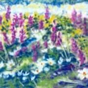 Dancing Daisies Art Print