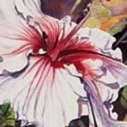 Dancing Hibiscus Art Print
