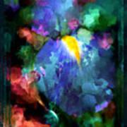 Dancing Iris Art Print
