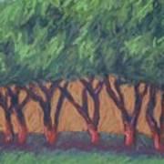 Dancing Trees Art Print