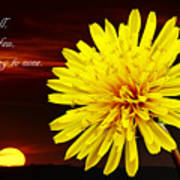 Dandelion Against Sunset With Inspirational Text Art Print