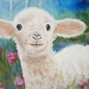 Daphne Star's Ears.   Flying Lamb Productions  Art Print