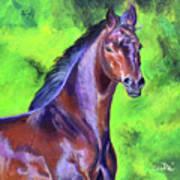Dark Red Bay Horse Art Print