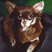 Darla Chihuahua  Art Print