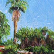 David Rd Palm Art Print