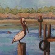 Davis Bayou Art Print