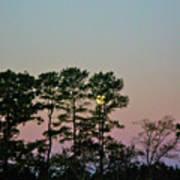 Dawn And Moon Setting - Virginia Art Print