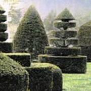 Dawn In A Topiary Garden   Art Print