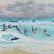 Dawn Pelicans Art Print