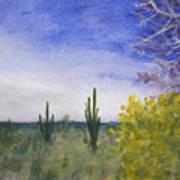 Day In Arizona Desert Art Print