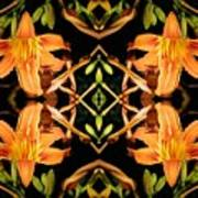 Day Lily Square Dance Art Print