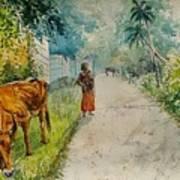 Daybreak In Kerala Art Print