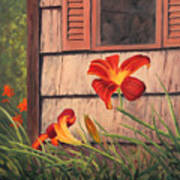 Daylilies At The Shed Art Print by Elaine Farmer