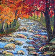 Dazzling View From The Rapidan Art Print