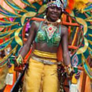 Dc Caribbean Carnival No 16 Art Print