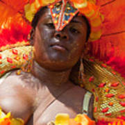 Dc Caribbean Carnival No 22 Art Print